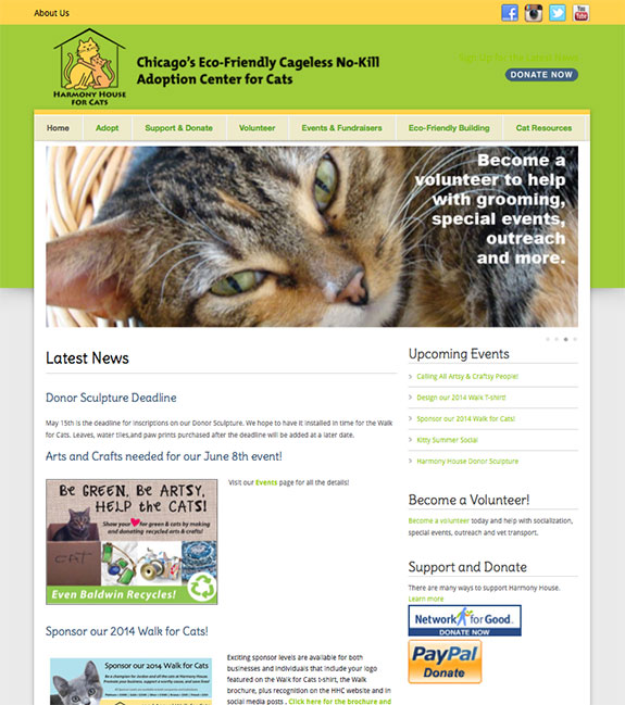 website design for cat shelter